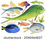 set of sea fish watercolor hand ...   Shutterstock . vector #2040464837