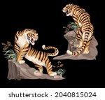 indian tigers isolated on black ...   Shutterstock .eps vector #2040815024