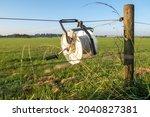 Reel Winder On Farm Fence
