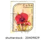 Old postage stamp from Cuba with flower - stock photo