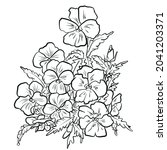 Viola Tricolor  Also Known As...
