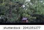 Wooden Birdhouse Attached To A...