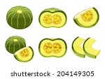 the picture of pumpkins like a... | Shutterstock . vector #204149305