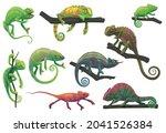 Chameleon Lizards With Tree...
