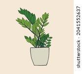 simplicity zanzibar gem plant... | Shutterstock .eps vector #2041552637