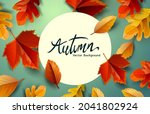autumn fall and thanksgiving...   Shutterstock .eps vector #2041802924