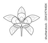 abstract hand drawn flower... | Shutterstock .eps vector #2041974404