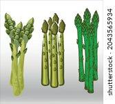 set of asparagus  icon  line... | Shutterstock .eps vector #2043565934