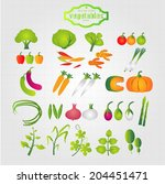 healthy eating and  vegetables  ... | Shutterstock .eps vector #204451471
