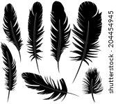 feather of bird set vector...   Shutterstock .eps vector #204454945