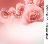 rose | Shutterstock . vector #204539821
