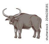 hand drawn asian water buffalo | Shutterstock .eps vector #2046238181