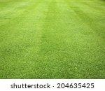Green Grass Background Pattern...