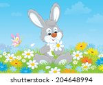 bunny with a daisy | Shutterstock . vector #204648994