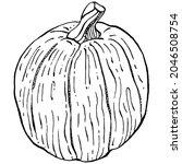 pumpkin vector sketch hand... | Shutterstock .eps vector #2046508754