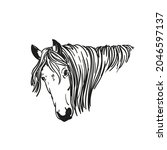 sketch of horse head with long...   Shutterstock .eps vector #2046597137