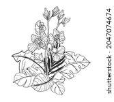 line art floral design... | Shutterstock .eps vector #2047074674