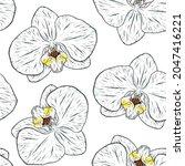orchid flower sketch....   Shutterstock .eps vector #2047416221