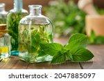 Bottles Of Mint Essential Oil ...
