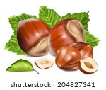 hazelnuts with leaves. photo... | Shutterstock .eps vector #204827341