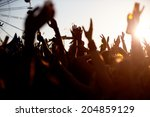 audience at outdoor music... | Shutterstock . vector #204859129