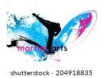 martial arts  vector... | Shutterstock .eps vector #204918835