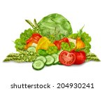 vegetable organic food mix... | Shutterstock . vector #204930241