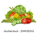 vegetable organic food mix... | Shutterstock . vector #204930241