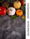 Various Decorative Pumpkins And ...