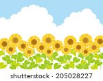 sunflowers | Shutterstock .eps vector #205028227