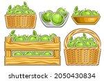 vector set of green apples  lot ... | Shutterstock .eps vector #2050430834