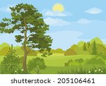 summer landscape with pine and... | Shutterstock .eps vector #205106461
