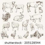farm animals. set of vector... | Shutterstock .eps vector #205128544