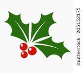 holly berry icon. christmas... | Shutterstock .eps vector #205152175