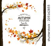 Fall Background With Leaves....