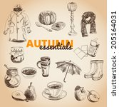 a vintage vector illustration... | Shutterstock .eps vector #205164031