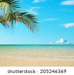 palm leaves over a golden shore | Shutterstock . vector #205246369