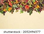 Autumn Harvest Festival...