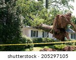 Uprooted Tree Fell On A House...