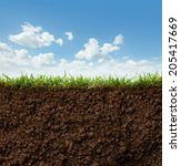 cross section of grass and soil ... | Shutterstock . vector #205417669