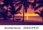 vacation  beach  summer and... | Shutterstock . vector #205419925