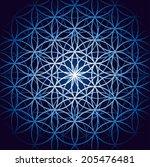 vector image   flower of life  | Shutterstock .eps vector #205476481