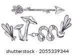 boho witch design element... | Shutterstock .eps vector #2055339344