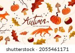 autumn and nature collection.... | Shutterstock .eps vector #2055461171