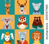 decorative animal hipsters... | Shutterstock .eps vector #205557985