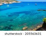 ibiza punta de xarraca... | Shutterstock . vector #205563631