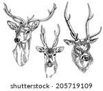 set of hand drawn deer heads.... | Shutterstock .eps vector #205719109