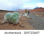 haleakala crater with trails in ... | Shutterstock . vector #205722607