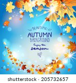 autumn leaves on blue sky with... | Shutterstock .eps vector #205732657