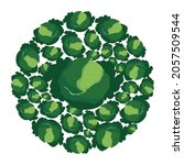 kale heads in circle. fresh...   Shutterstock .eps vector #2057509544